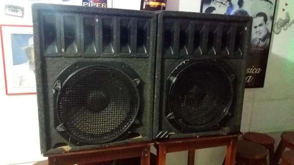 vendo Cajas de sonido grandes, tipo Peavey a muy buen precio