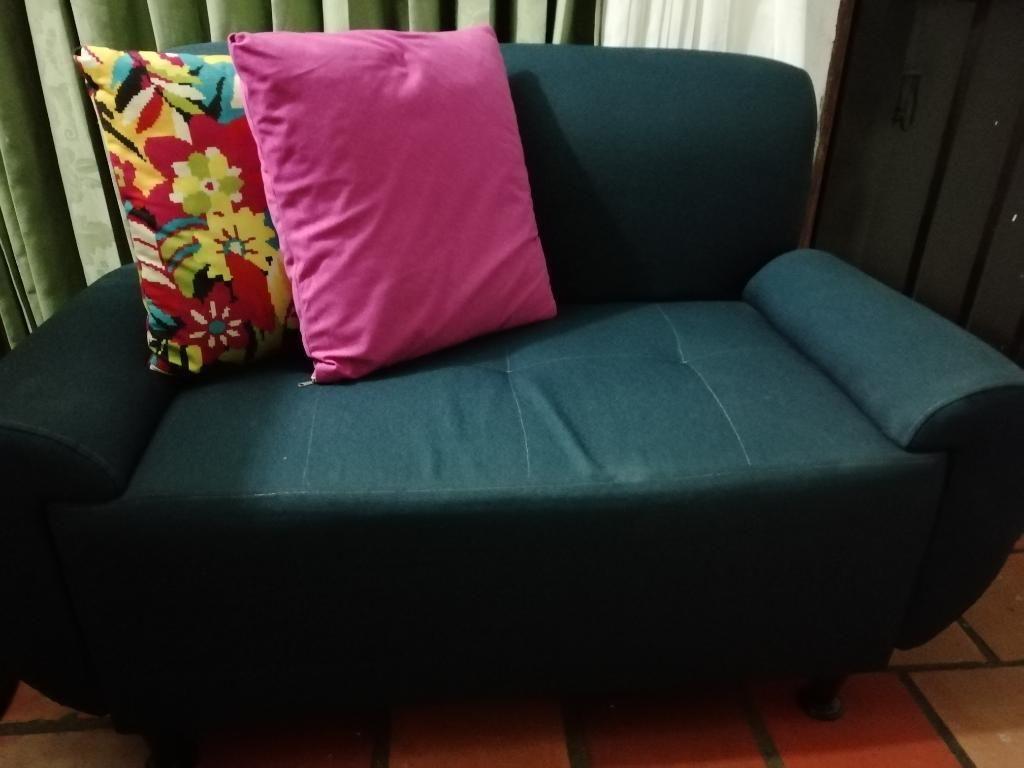 Venta de Sofá de 2 Puestos con Cojines