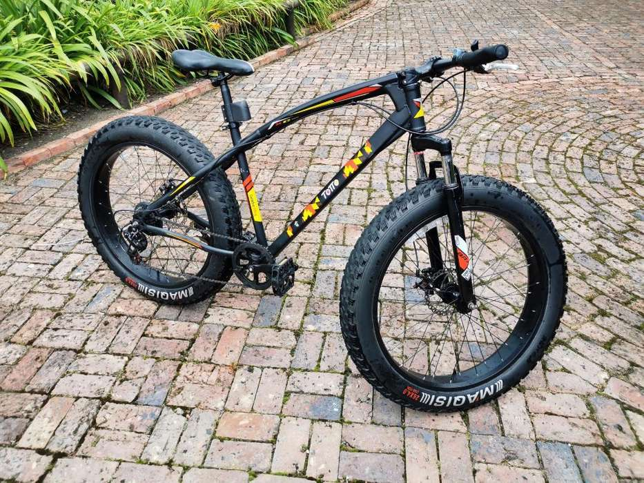 Bicicleta Fat