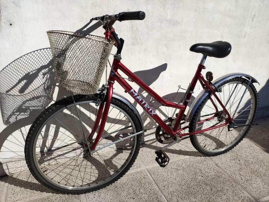 Bicicleta Dama R26