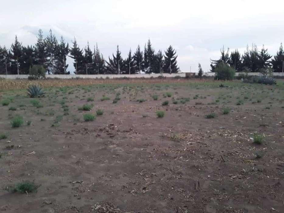 Vendo 1 hectarea de terreno 0993944786