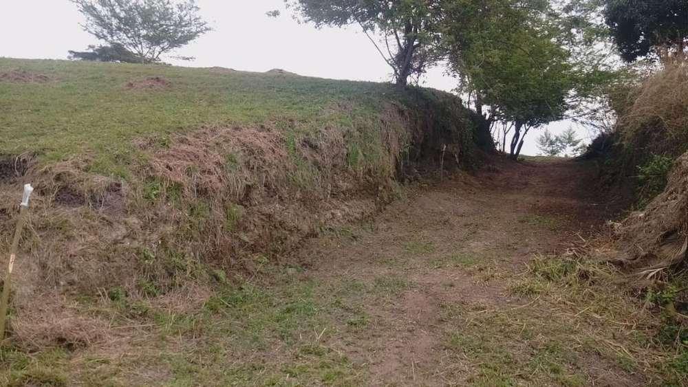 Lote Cartago Valle 400 Mt