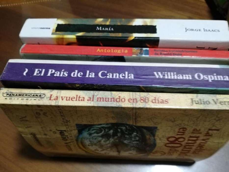 LIBROS DE PLAN LECTOR Y ESCOLARES