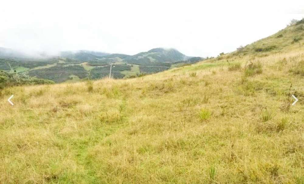San Bartolo terreno 11.620 metros cuadrados al pie de la carretera