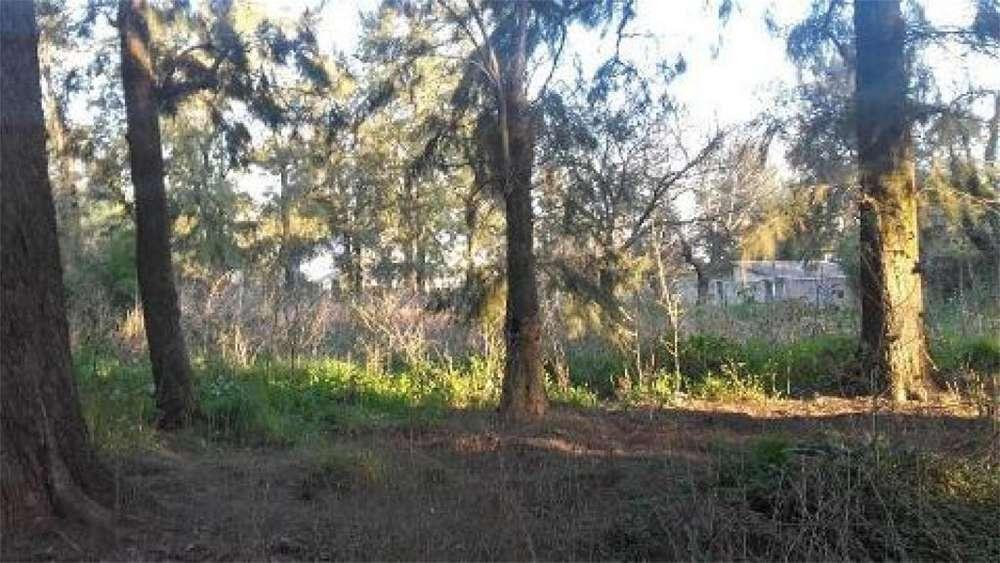 Arcos 100 - UD 75.000 - Terreno en Venta