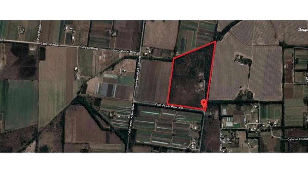 Las Toscas Esq .los Pajonales S/N - UD 338.000 - Campo en Venta