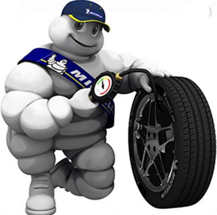 Distribuidor autorizado de <strong>llantas</strong> de las marcas BF y Michelin
