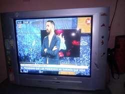 Tv Philips 21 Pulgadas(en Buen Estado)
