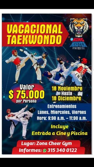 Vacacional de Taekwondo