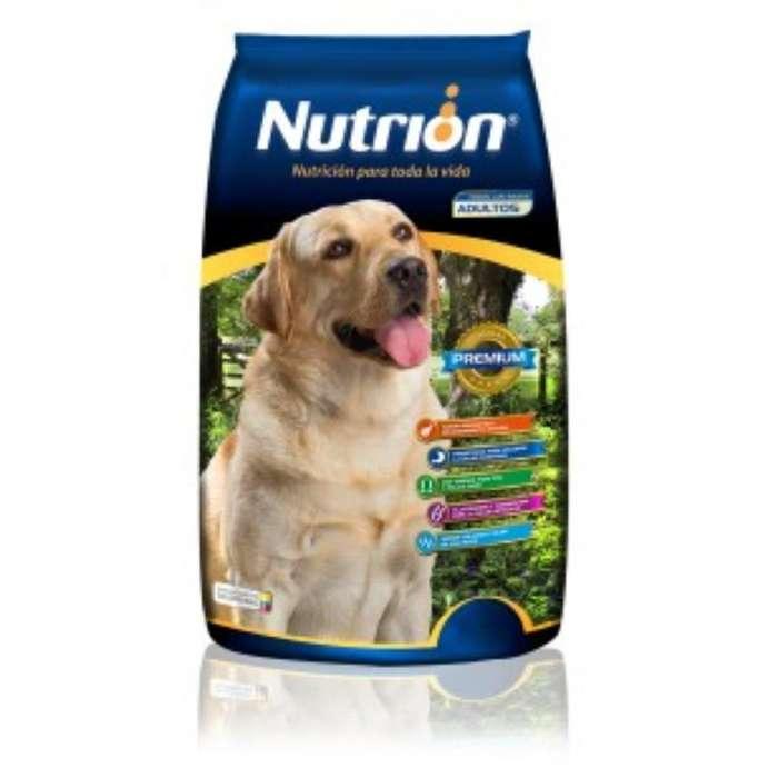 Alimento de Perro