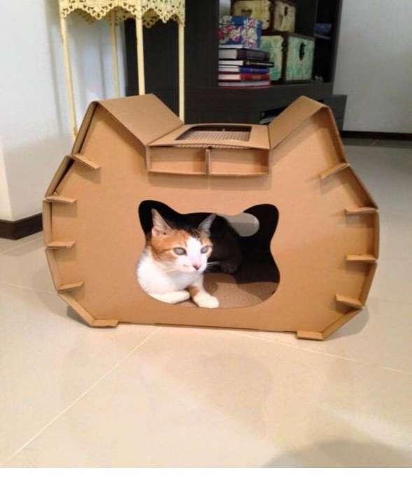 Casa Carton <strong>gato</strong>