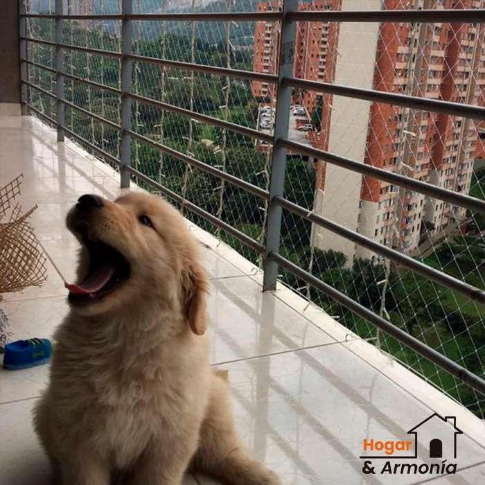 Mallas de seguridad (<strong>perros</strong>)