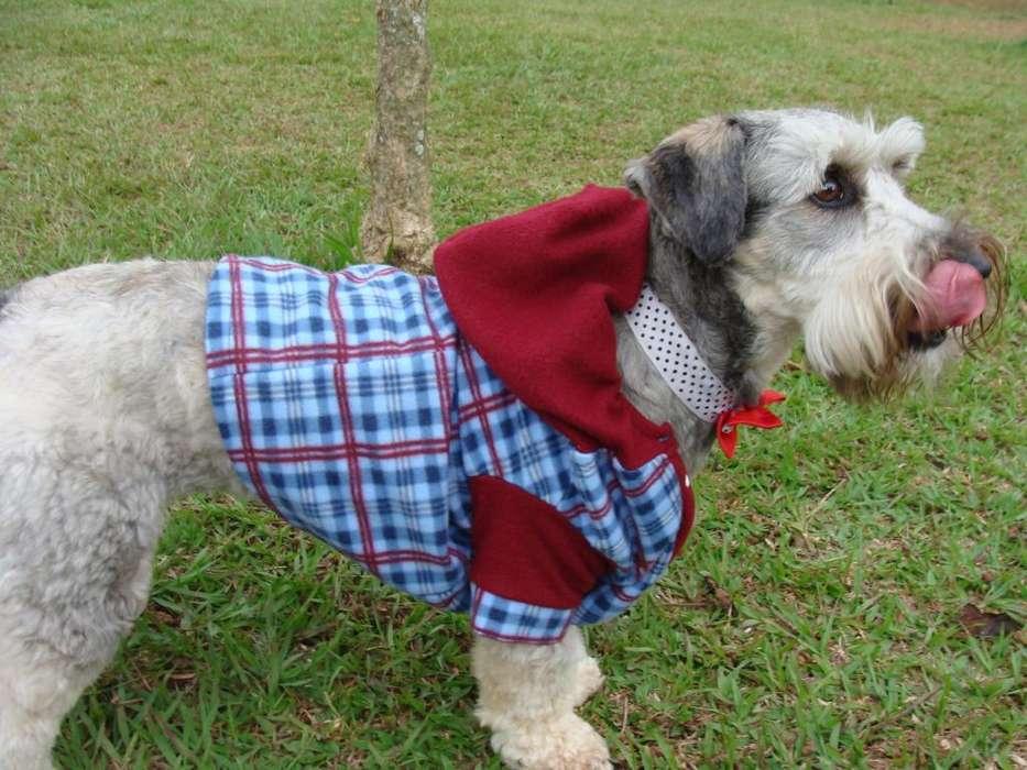 Ropa para <strong>perros</strong>, mascotas, disfraces