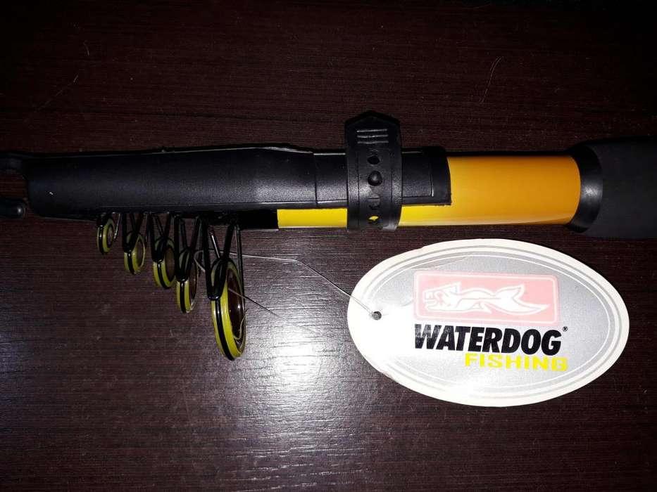 Liquido 2 Cañas de pescar Waterdog a estrenar
