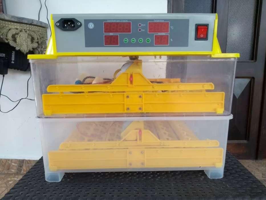 Incubadora Automática De 96 Huevos Hatcher