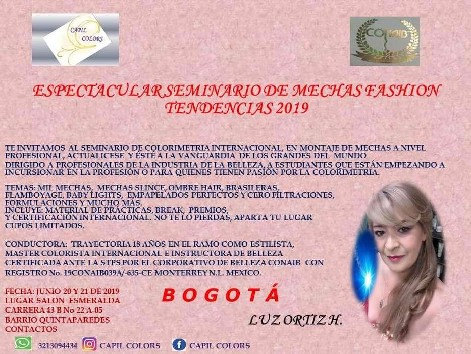 SEMINARIO DE MECHAS FASHION TENDENCIAS 2019