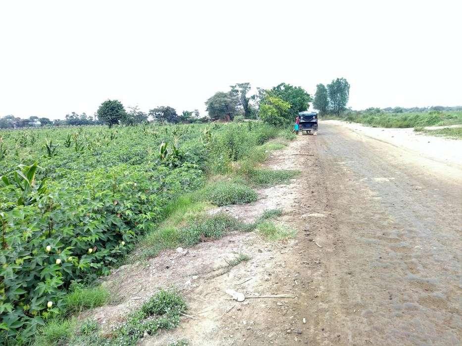 remato 2 hectares de terreno para multiples cultivos plan de cultivo amplio acceso S/.85.000 todo