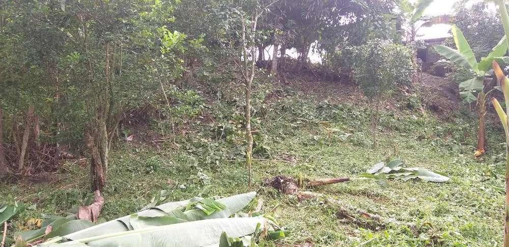 Terreno de 10x20m en Viche