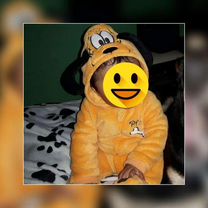 Diszfras de Pluto