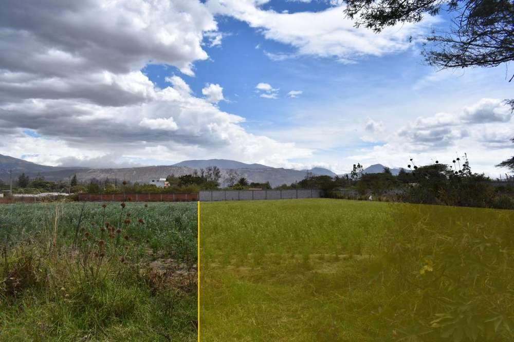 Venta terreno plano entre el Quinche y Guayllabamba