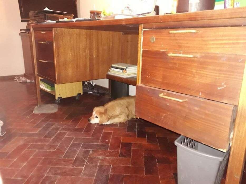GRAN <strong>escritorio</strong> DE MADERA