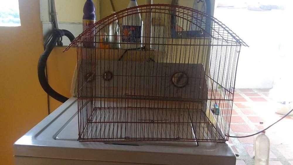 Jaula para Aves en Buen Estado