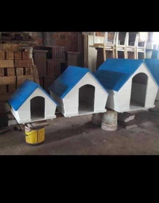 Casa para Perro Oferta