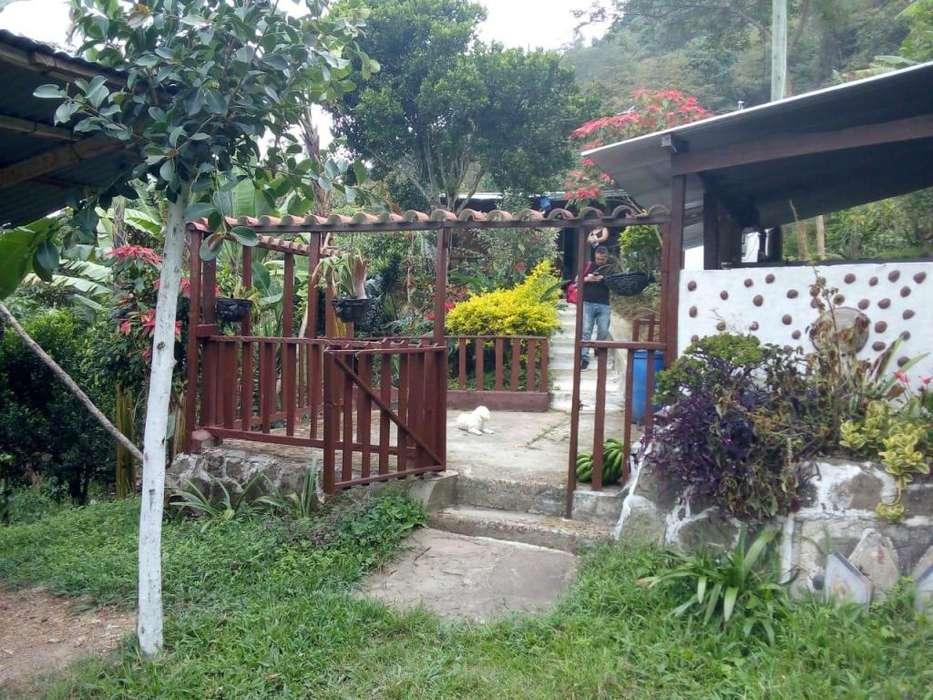 281-SE VENDE HERMOSA FINCA EN SILVANIA TIBACUY