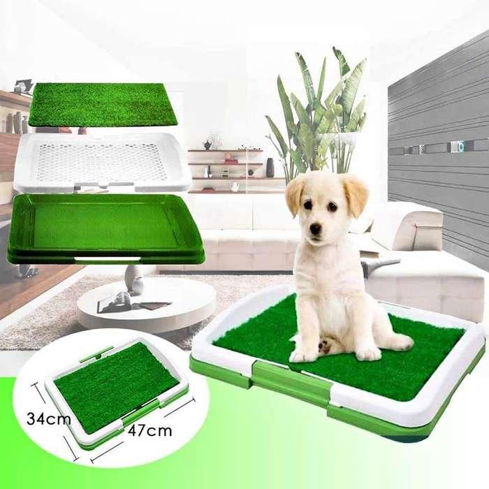 Baño Ecologico Portatil Para Mascotas Perros <strong>gato</strong>s