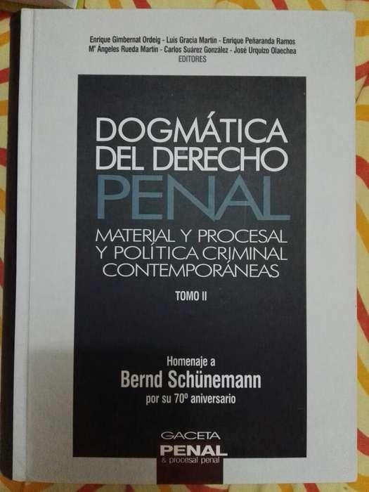 Libro de Dogmatica Del Derecho Penal