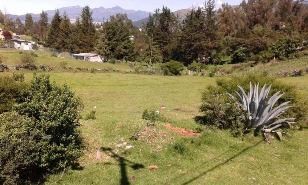 Terreno en Venta Sector La Merced/ Alangasi/ Los Chillos