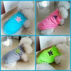 Diseños Exclusivos para Perros Y Gatos