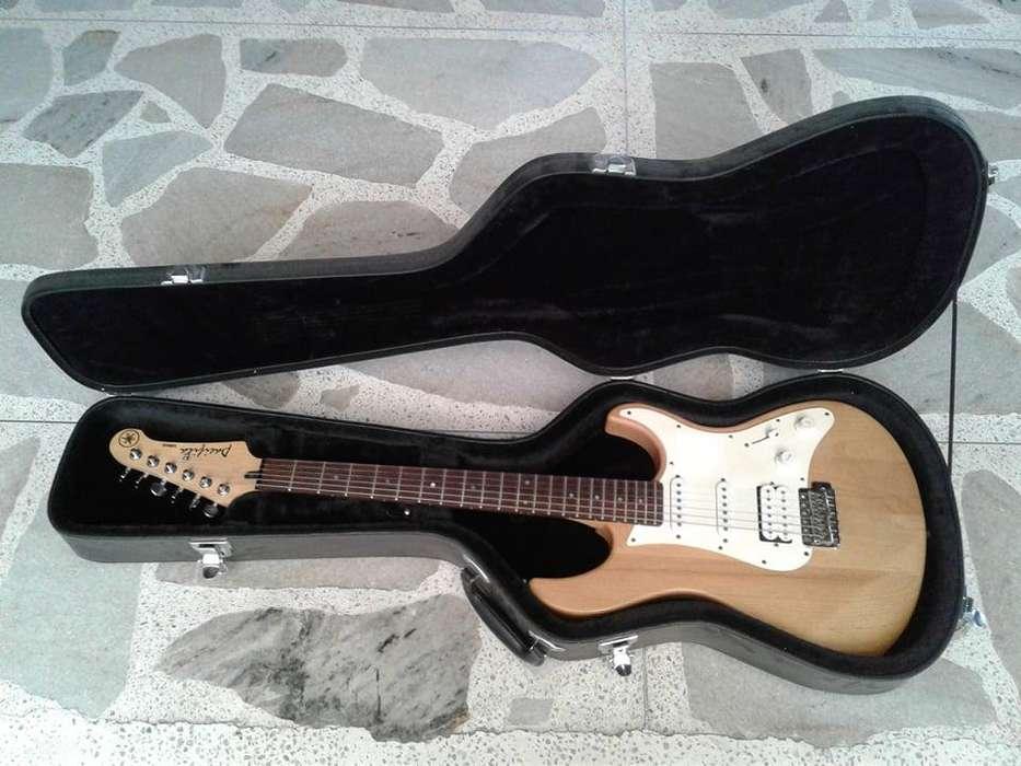 Hard Case Guardian Stratocaster