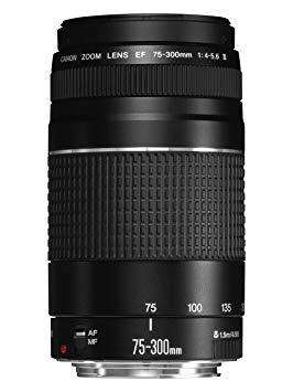 Lente Canon 75 - 300Mm