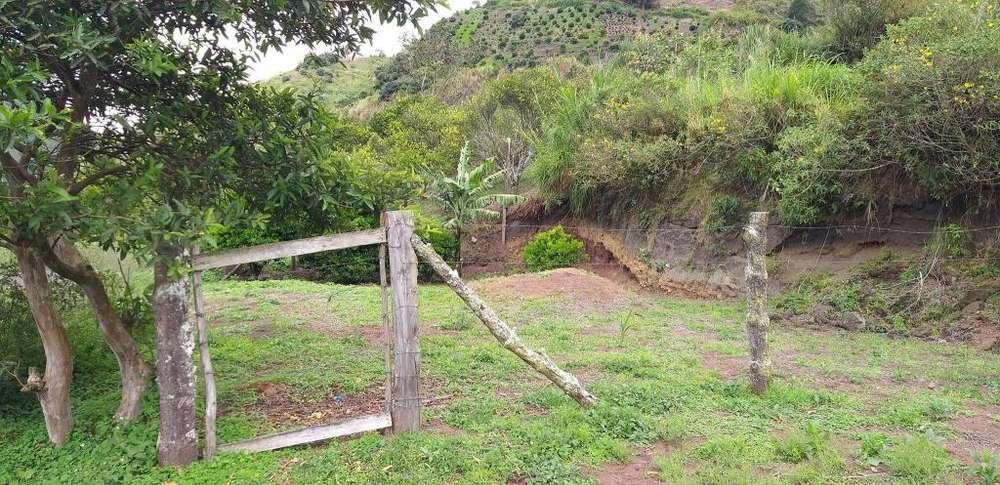 Se vende este lindo terreno en Baños de Agua Santa (Ulba)