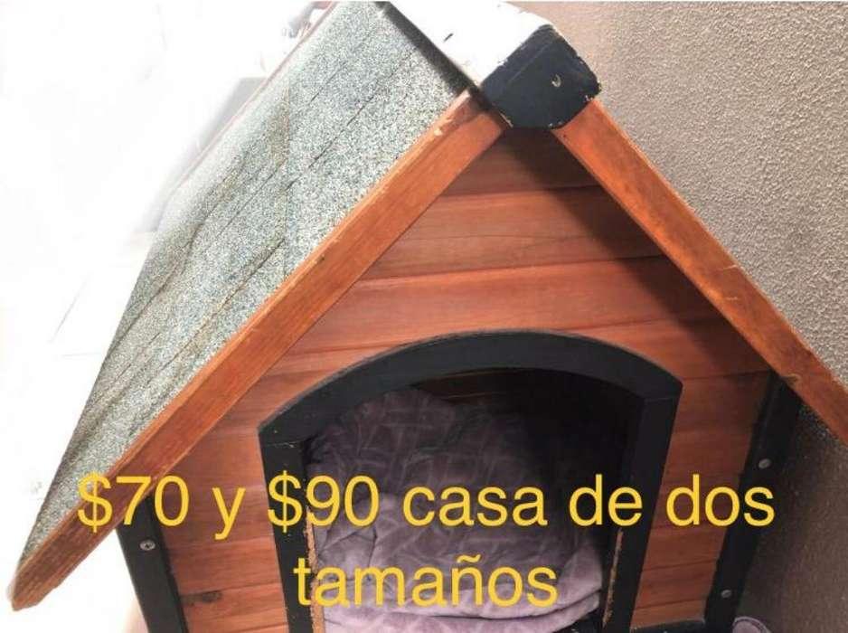 Casas para <strong>perro</strong> en Excelente Estado