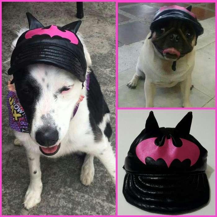 Gorras Y Disfraces para Tu Perrito