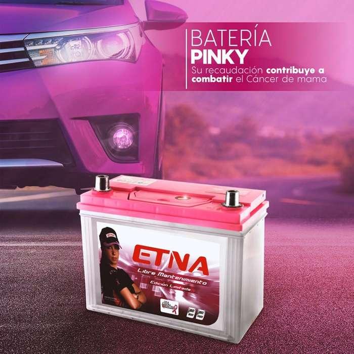 Batería Etna Pinky - Libre mantenimiento