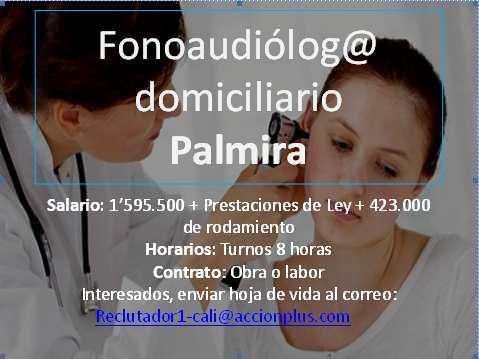 Fonoaudiologo-Palmira