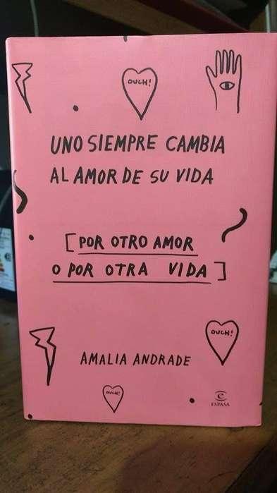 Libro Uno Siempre Cambia El Amor De Su Vida Amalia Andrade