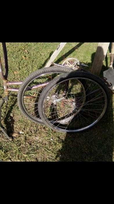 Cuadro Dama ruedas Completas