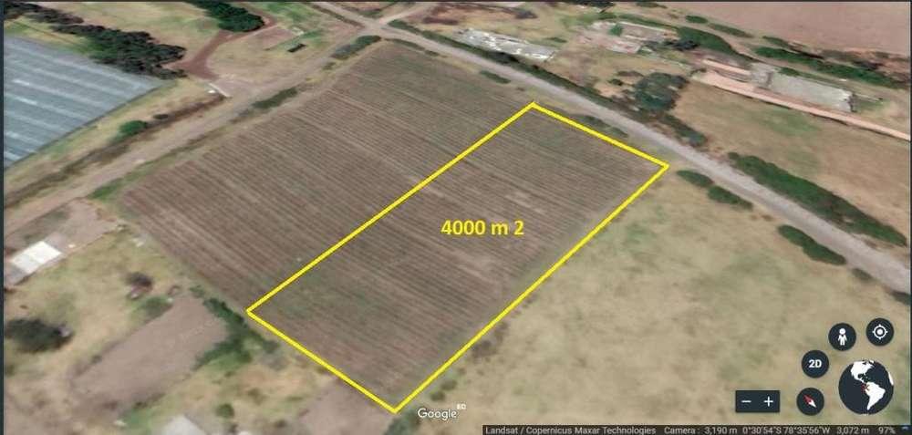Terreno de 4.000 m2 - Precio por m2 US 25 - en Machachi, parroquia Aloasi, barrio la Estacion.