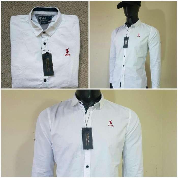 Camisa Polo Assn Italy Original Lo Mejor