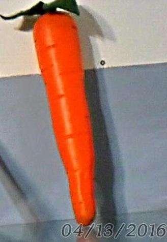 Zanahoria plasctica fiesta maraca