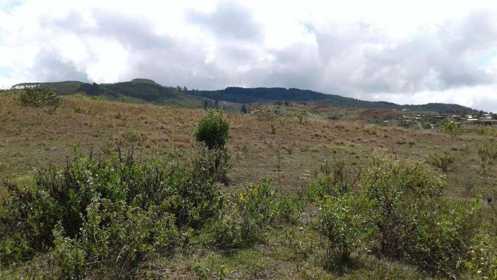 Se vende Lote en pavas 47 hectáreas
