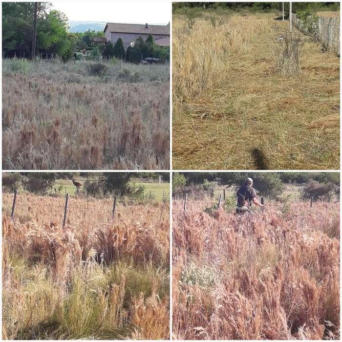 Vendo Lotes de Terrenos en San Lorenzo
