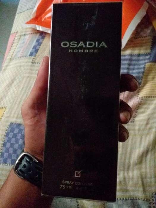 Osadia Hombre