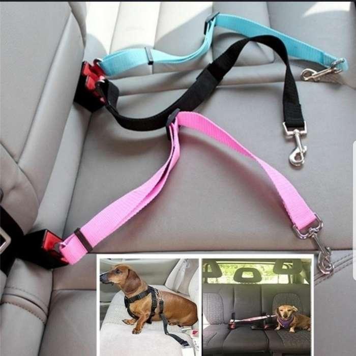 Cinturon de Seguridad Mascotas
