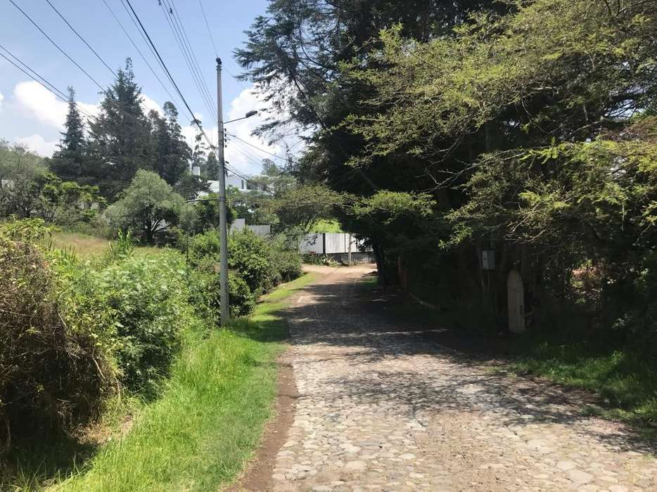 Venta Terrenos Lotizacion en Tumbaco