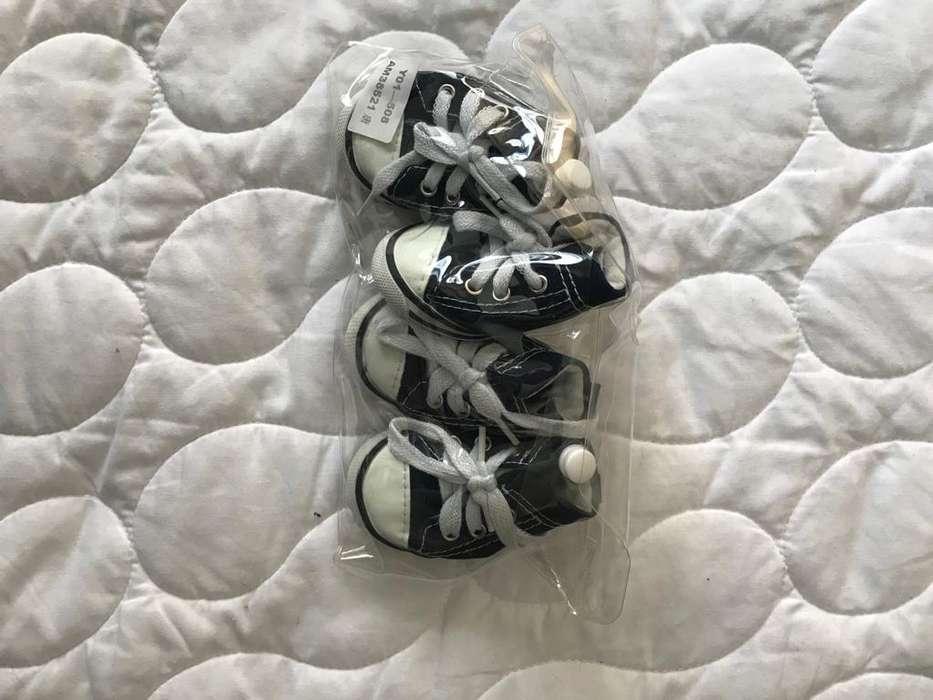 Zapatos nuevos tipo converse para perro pequeño